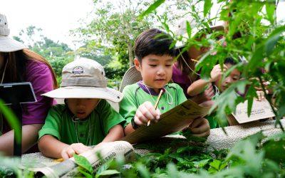 Nature Explorers at Bishan-Ang Mo Kio Park: Learning in Nature