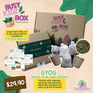 Busy-Kidz Box March Holiday Edition